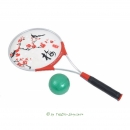 Taiji Bailong Ball Set - Modell Blüte -Metall Racket...